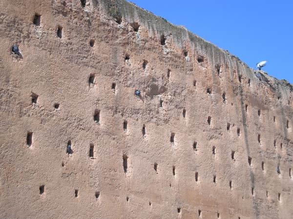 Maroko, Rabat - Detalj Andaluzijskog zida.