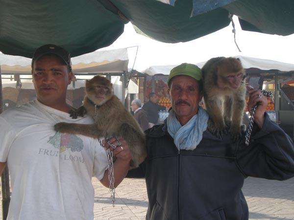 Maroko, Marrakech -Živopisni prizori s Djemaa el Fna.